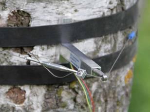 DC2树干周长生长变化记录仪