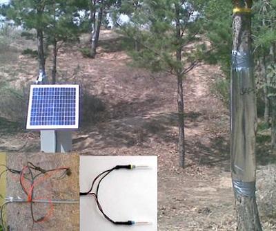 PE-SF08 植物插针茎流系统