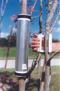 Dynagage包裹式植物茎流传感器