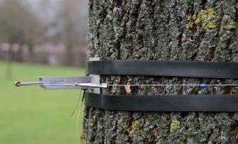 DC3树干周长生长变化传感器