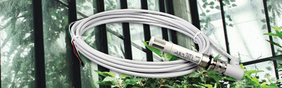 EE08-SS空气温湿度传感器