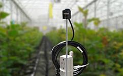 SQ-420便携式光量子仪