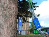 TRU树木雷达、Picus 3和TreeQinetic树木拉伸测试仪落户长春市园林植物保护站