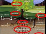 为什么要测量土壤含水量?
