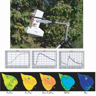 FC 1000-H便携式植物荧光成像系统
