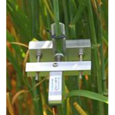 DD-S茎干直径生长变化传感器