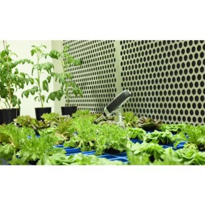 GC精密植物生长室
