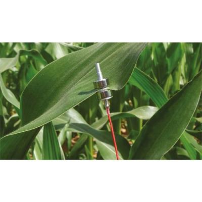 ZIM植物膨压水势测定系统