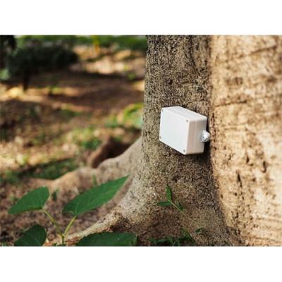 城市树木智能监测系统