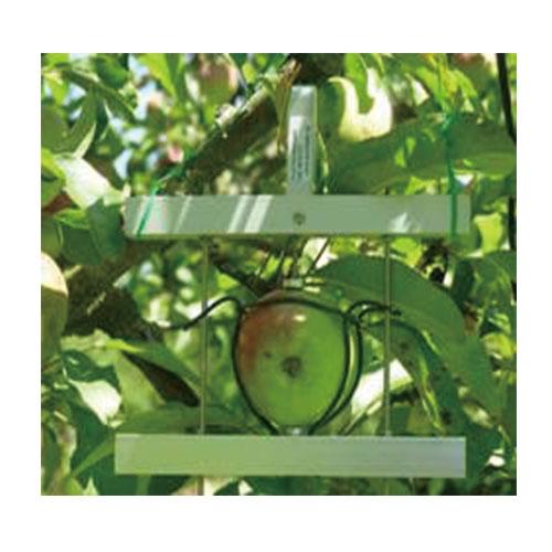 DF水果蔬菜生长测量仪