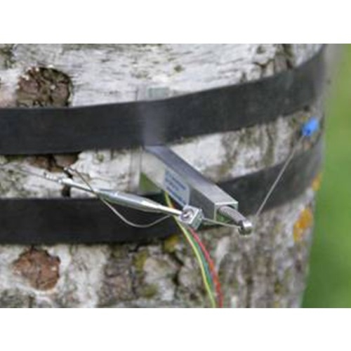 DC2树干周长生长变化传感器