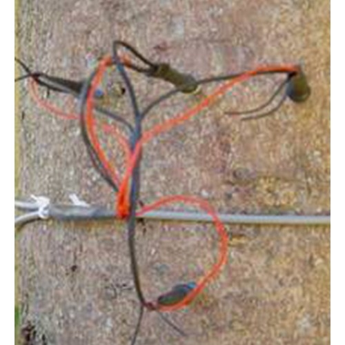 SF-L探针式茎流/液流传感器