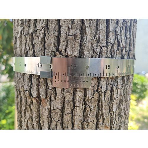 D型树木胸径生长测量环
